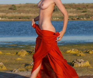 Skinny young Anita E strips at the beach to flaunt firm tits and bald pussy