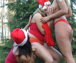 Busty lesbians play with each other nipples while in the woods in Xmas attire