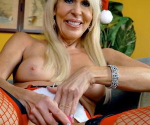 Pornstar Platinum Erica Lauren