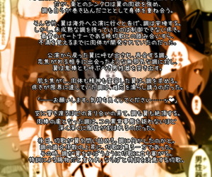 PLUTO Fudou Shin Hibiki Uta -HypNoise- Senki Zesshou Symphogear Chinese 不咕鸟汉化组 Digital