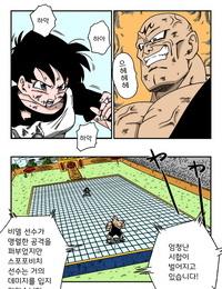 Yamamoto Videl vs Spopovich Dragon Ball Z Korean