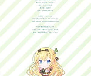 COMIC1☆17 Make an issue of FLYERS Naruse Mamoru Colorful Preferred Cluster Preferred Manful Girl