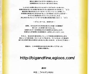 SC41 Nagaredamaya BANG-YOU Piropon GOLD Record of Lodoss War Korean