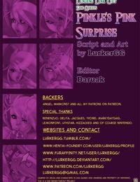 LurkerGG Lending Link Out Side Quests - Pinkles Pink Surprise The Legend of Zelda