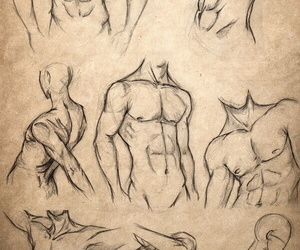 Body Reference For Drawing Hentai -Futa And Trap Version-