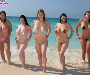 5 rounded out females summon involving model far abbreviated bikinis on a sandy littoral