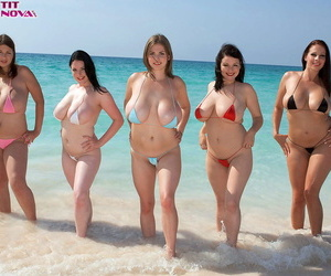 5 curvaceous females get together to model in skimpy bikinis on a sandy beach