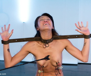 Francesca Le tortures a restrained Jayden Lee with a cattle prod