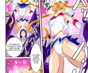Warabimochi Seigetsu Botsuraku - 성월몰락 Bishoujo Senshi Sailor Moon Korean