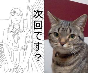Circle Kotatubuton Ippan no Josei ga Houkei Chinkasu no Souji o Suru. Chinese【不可视汉化】