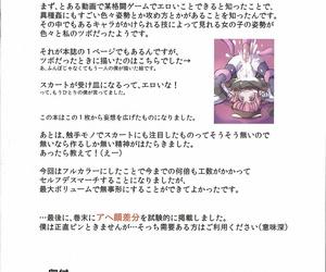 Reitaisai 15 Anzen chitai Funbo Sukima Misty Touhou Project