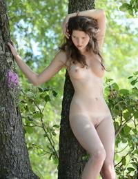 Youthfull solo woman Anamika peels off a bikini before climbing a tree in the nude
