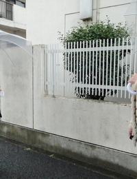 Petite Japanese girls Jun Sena & Asakura Kotomi get banged by older gentleman