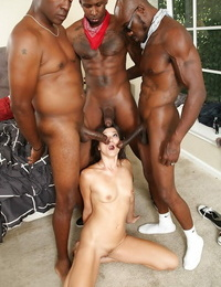 Interracial gang-fuck with a beautiful Asian brunette Cece Stone