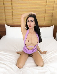 Brunette ladyboy Bella gets ass pounded by a lengthy hard-on in POV mode