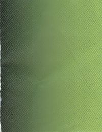 ALICESOFT Sengoku Rance Manual - part 4