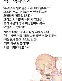 Nanao 3Piece ~Summer~ COMIC ExE 08 Korean 팀실버 Digital
