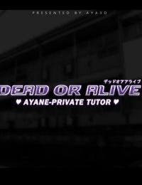AYA3D- Ayane-Private Tutor Dead or Alive