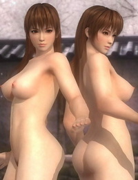 Random Dead or Alive 5 Last Round Nude Mod
