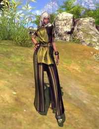 Blade and Soul Female Gon Clothes - part 3